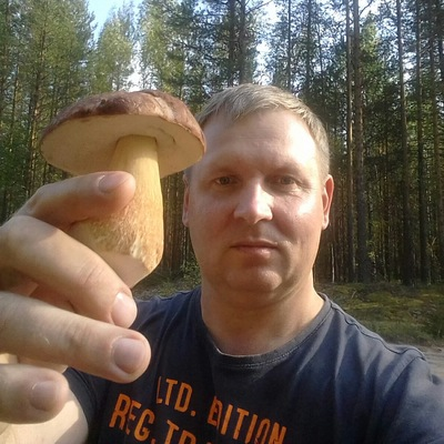 Владимир Кровля