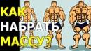 Мышцы начнут расти даже у дрища! Эти 3 простых правила помогут набрать мышцы каждому!