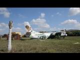 Олег Зубков разнимает дерущихся львов в самолете ! Тайган .Крым