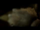 Океан Ельзи - Обйми - 1080HD