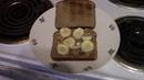Elvis Peanut Butter Banana Sandwich Deluxe Recipe