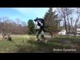 Робот Boston Dynamics на прогулке