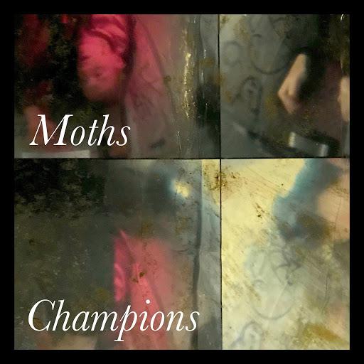 Moths альбом Champions