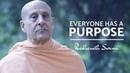 Everyone has a purpose | Radhanath Swami
