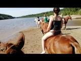 Благовещенское - купание лошадей