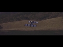 Первая в мире летающая машина На видео попали испытания первой в мире летающей машины, которая уже разрешена к использованию в С