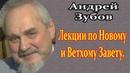 Просто блестяще!Воля человека./Профессор, доктор исторических наук Андрей Зубов. 🌿