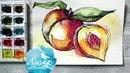 Как нарисовать персики акварелью. Скетч. 365 арт дней. День 12