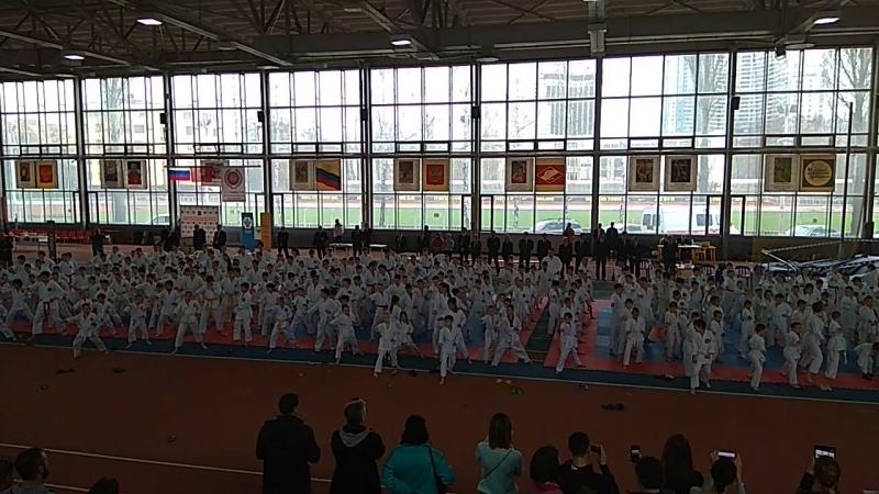 Стадион имени Братьев Знаменских состоялся турнир по каратэ.