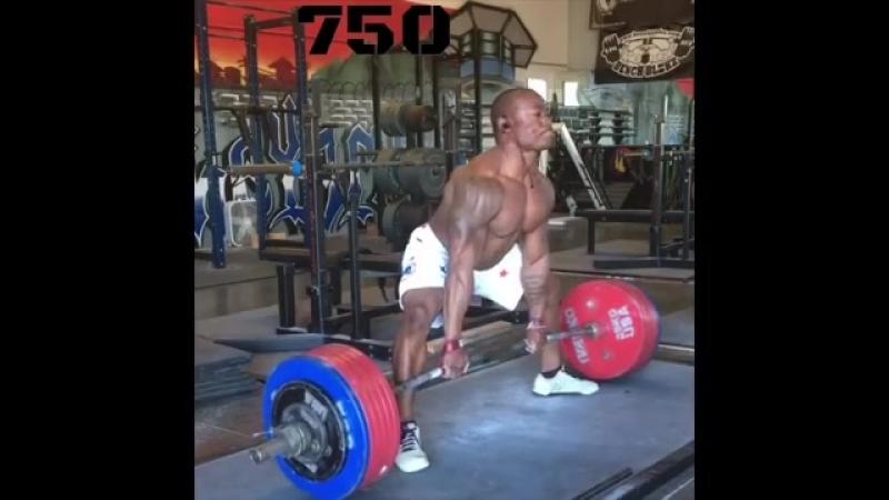 Николас Остин - тяга 340 кг (82,5 кг)