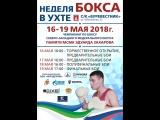 Чемпионат СЗФО по боксу среди мужчин 19-40 лет. 15-19 мая 2018г. 2 день.