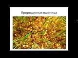 СоБиогенол (Сок пророщенных зерен пшеницы)