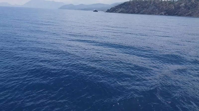 Мне снова снится море