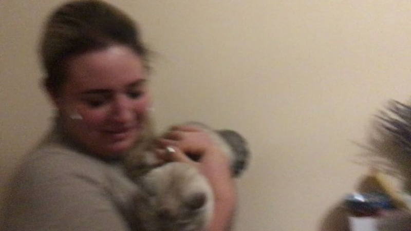 """Саша Черно on Instagram Короче походу кошки это не моё 😂😂😂 Хотя я их очень люблю 😔 сашачерно любовь отношения сейшелы тнт дом2 поляна"""" смотреть онлайн без регистрации"""