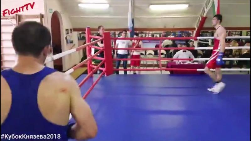 Подготовка и бои Гасана Алиханова (БК Сатурн)