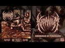 KRAANIUM CHRONICLES OF PERVERSION OFFICIAL ALBUM STREAM 2015 SW EXCLUSIVE