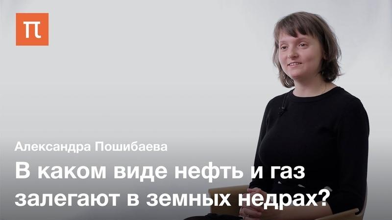 Углеводороды нефти — Александра Пошибаева