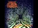 Spawn of Possession - Cabinet