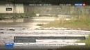 Новости на Россия 24 В Сочи начинается сезон охоты за драгоценностями