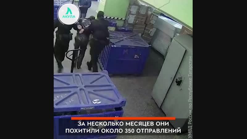 Воры из «Почты России» | АКУЛА