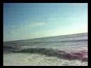 Море Ольгинки 2016 год