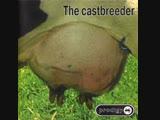 The Prodigy - C A S T B R E E D E R (Feat. DJ Junkie XL, Lunatic CaLm, FuLL ALbum FEE-LEE, XL-Recordings, 1999,ExcLusive!)