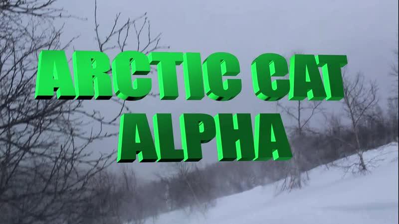 Alpha Arctic Cat