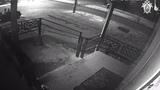 В Курганской области депутат сбил насмерть пенсионерку