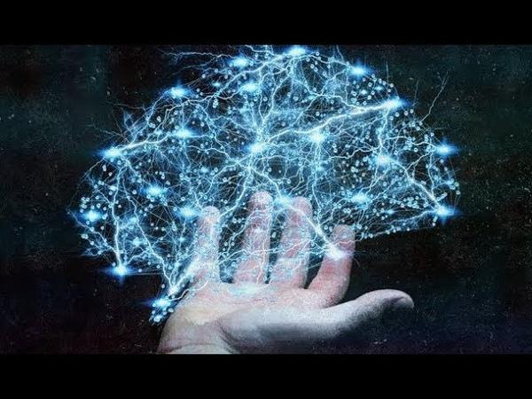 От чего зависело развитие интеллекта Человека
