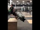 Родившийся без ног борец выполняет прыжки на тумбу
