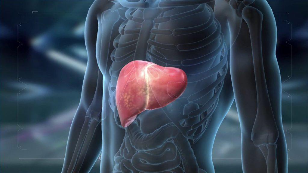 Каковы причины гепатомегалии?