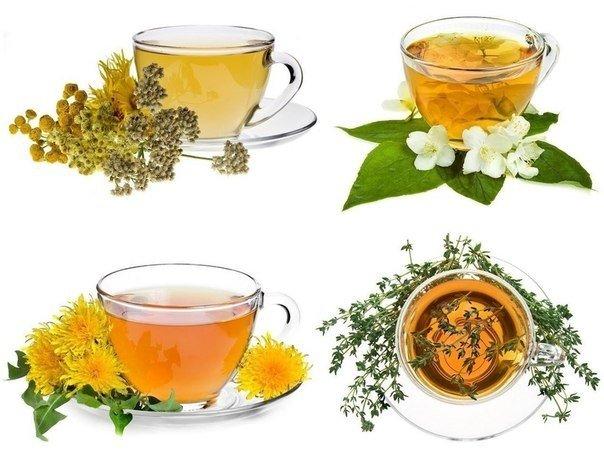 травяные чаи и мед С древних времен люди пользовались травами, цветами, кореньями для здоровья, восстановления бодрости и силы. Опыт накапливался тысячелетиями и бережно хранился у