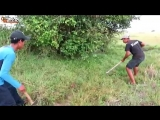 Terrifying! How To Find snake And Catch Big Snake Near The Canal By Brave Boys -.mp4