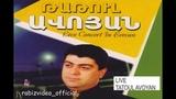 Mtorumner - Hovhannes Vardanyan(Tatul Avoyan Concert in Hamalir)