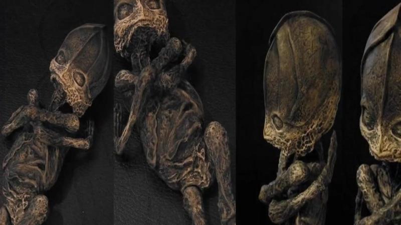 Alien-Baby in Russland entdeckt? - Das mysteriöse Kyshtym Wesen