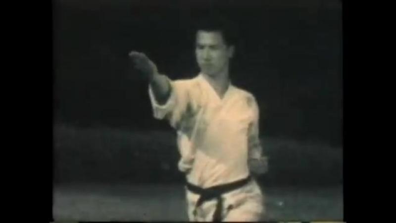 Учебное видео пособие по каратэ-до 1995