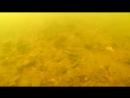 Пробные подводные съемки!
