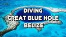 ОС 129 / Дайвинг в Большой голубой дыре Белиза / Diving in Great Blue Hole Of Belize
