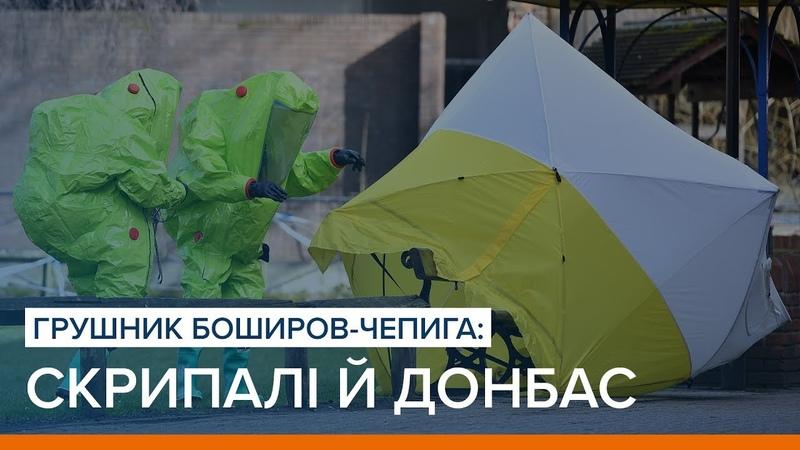 Грушник Боширов Чепига Скрипалі й Донбас Ваша Свобода