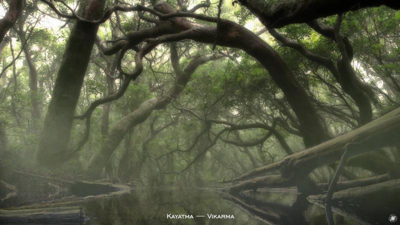 Kayatma — Vikarma