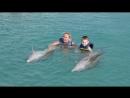 Дельфинарий Куба 4