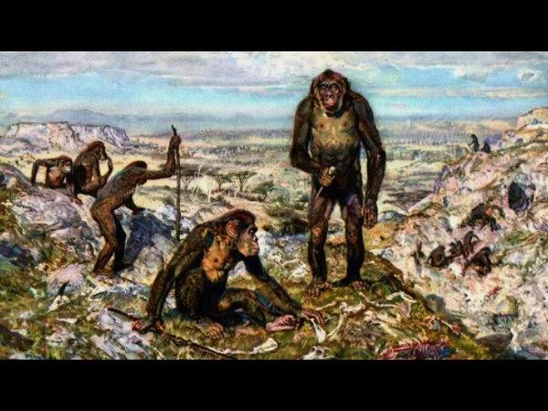 Человечество сегодня и 2 миллиона лет назад (рассказывает антрополог Аили Марни ... xtkjdtxtcndj ctujlyz b 2 vbkkbjyf ktn yfpfl