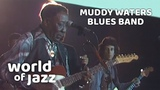 Muddy Waters Blues Band Live At The North Sea Jazz Festival 15-07-1979 World of Jazz