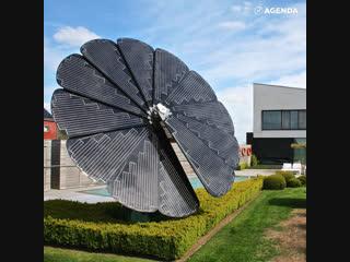 Гигантский цветок, собирающий солнечную энергию
