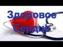 Инструкция по эксплуатации Сердца | Елена Бахтина