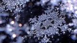 Снежинки - зимние цветы! - Детские песни и клипы - Snowflake children music clip