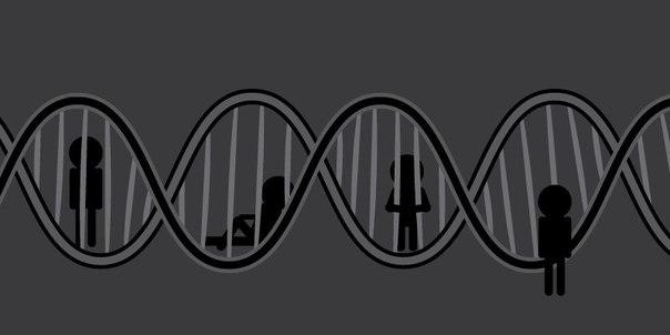 Занимательный отрывок из книги Ричарда Докинза «Эгоистичный ген»: В последнее время наблюдается неприятие расизма и патриотизма и тенденция к тому, чтобы объектом наших братских чувств стало все