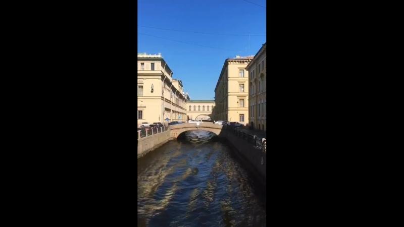 Эрмитажный мост в двух минутах от гастробара «Чайки»