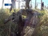 ГТРК ЛНР. Срочная новость. Полиция ЛНР обезвредила взрывное устройство 24 августа 2018