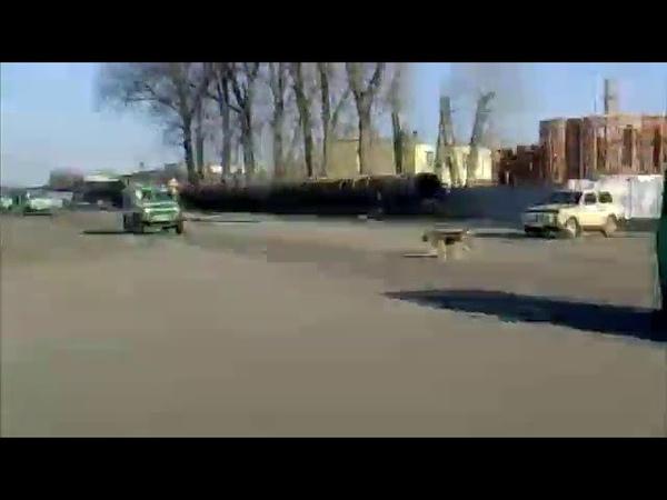 Большая колонна военной техники едет на восток Украины Снято в пригороде г Черкассы Украина